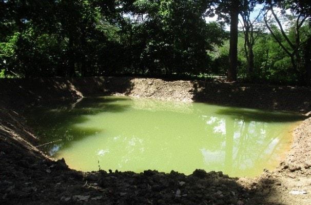 Cosecha de agua - Comité de ganaderos del Huila